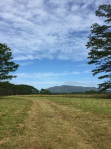 Kaua'i -  The Garden Isle